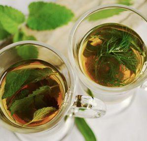 best healing herbs