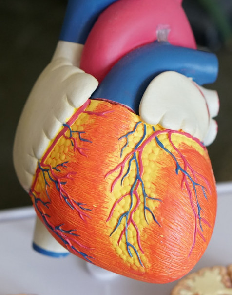 how to improve your heart health